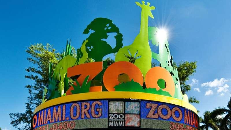 Zoológico de Miami já tem data para reabrir